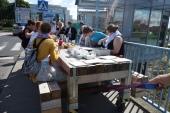 Der Tisch fährt von Słubice nach Frankfurt